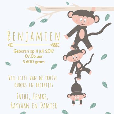 Geboortekaartje ontwerp - Dots and Lines - Charlotte - Grafisch vormgever
