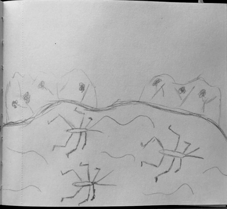 Schets schaatsenrijder - dieren illustraties - Grafische vormgeving - Dots and Lines