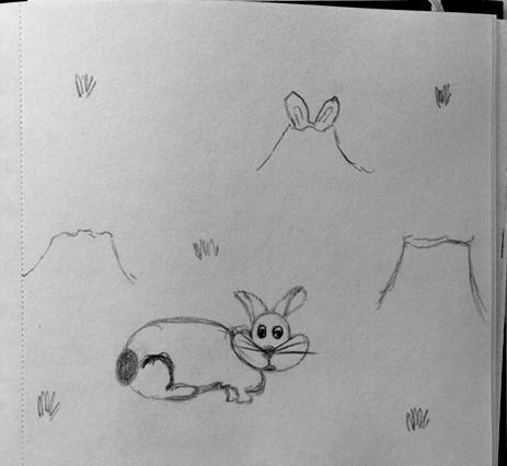 Schetsen konijn - illustratie - Grafische vormgever - Charlotte Heijmans
