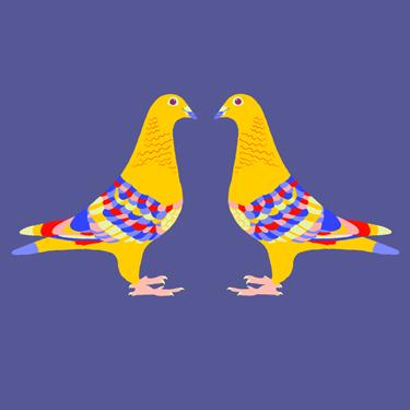 Illustratie duiven - Illustrator Tilburg