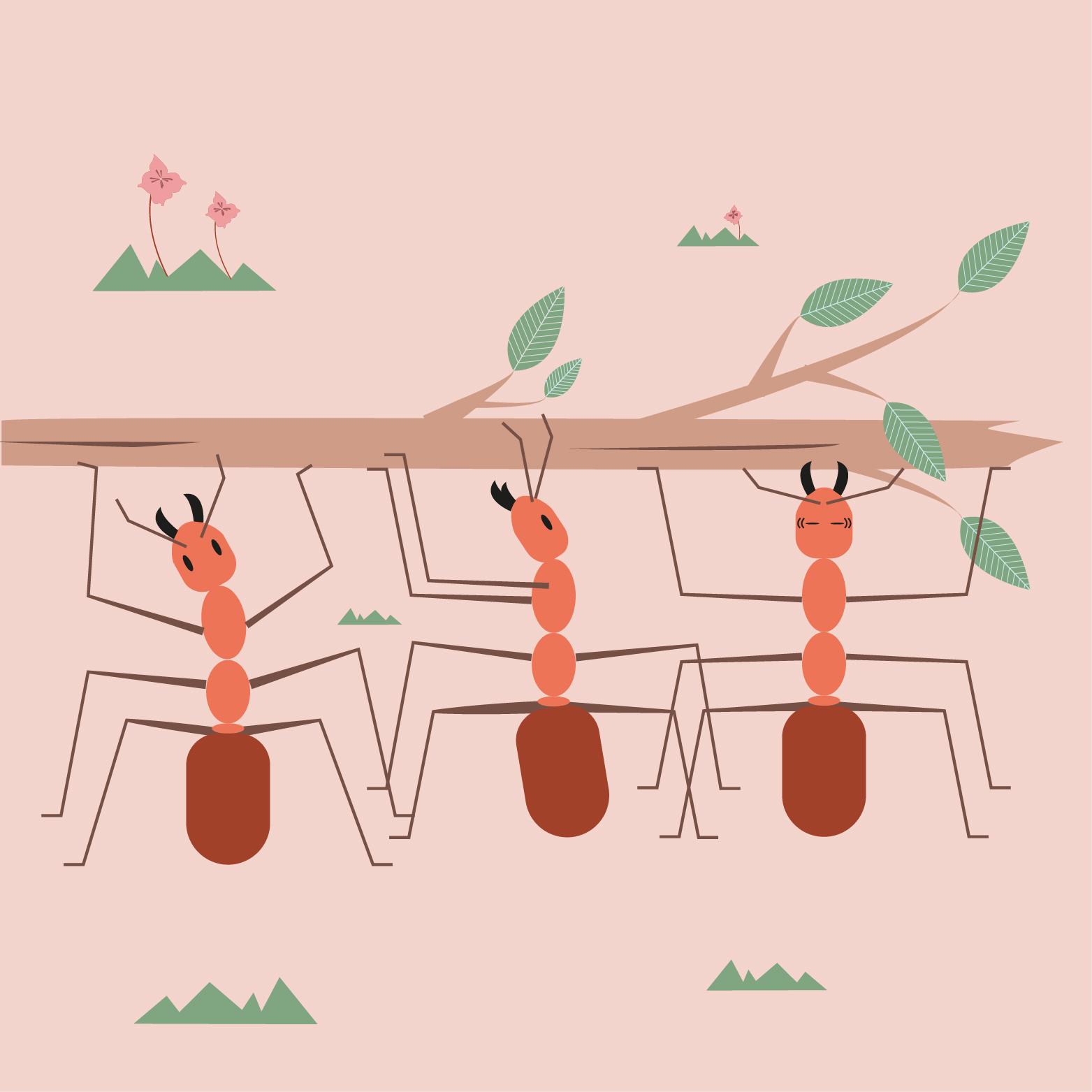 Illustratie mieren - illustrator Dots & Lines - Tilburg