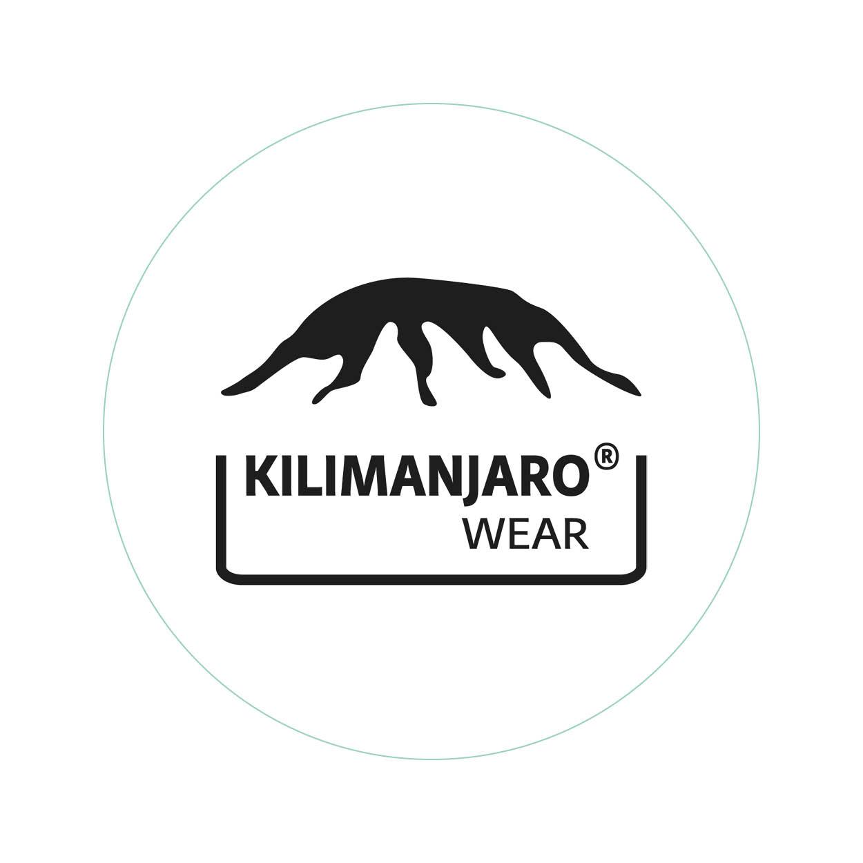 Logo ontwerp - Kilimanjaro - Dots & Lines - Grafisch ontwerp